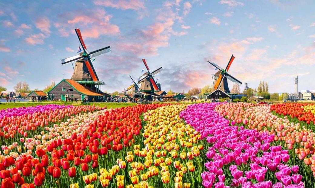 Voyage vélo-bateau : super tour des tulipes
