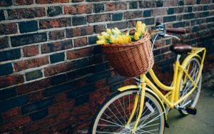 vélo jaune accoté sur un mur de brique avec un bouquet de tulipes jaunes dans son panier
