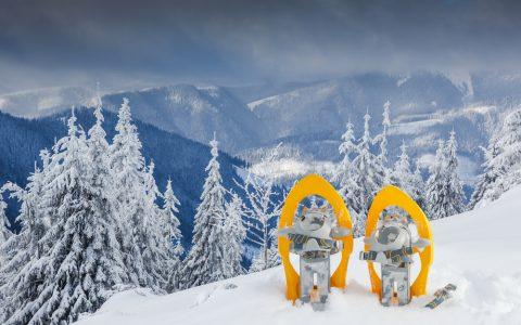 Sortie de raquettes et de ski de fond