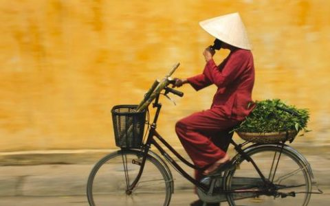 Le Vietnam est un pays palpitant où les contrastes sont à l'honneur. Visitez-le à ...