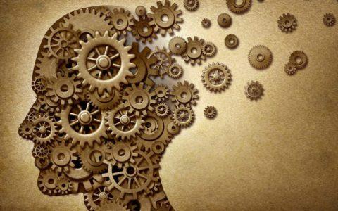 À la découverte de la maladie d'Alzheimer !
