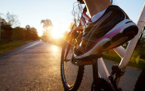 FADOQ - Vélo :voyages et escapades sur mesure