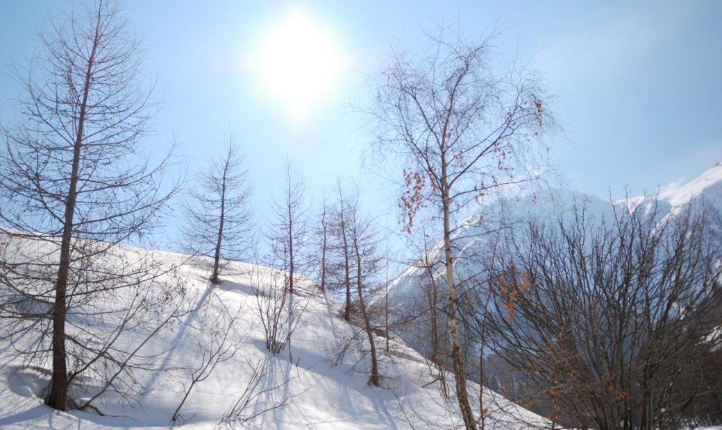 Nos Jeux d'hiver sont là! Joignez-vous à nous pour ce festival récréatif hivernal unique!