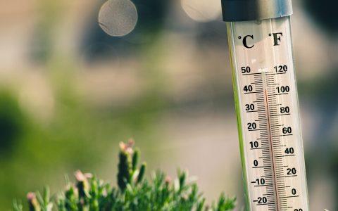 La santé des aînés menacée par le réchauffement climatique