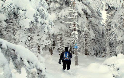 Forfait évasion plein air des Jeux d'hiver 50 + !