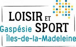 logo loisir et sport GIM