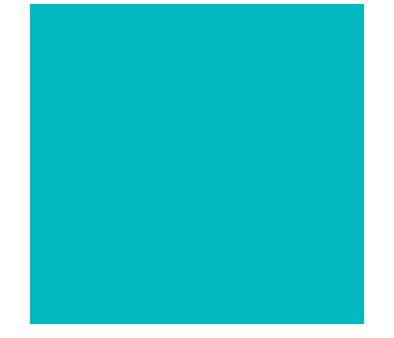 Intact assurance habitation