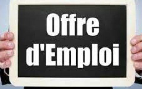 Poste de chargé(e) de projet/démarche en employabilité de la main-d'œuvre d'expéri...