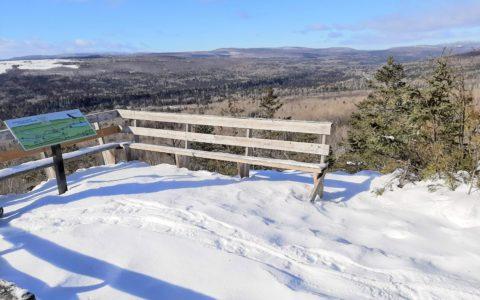 Marche en raquettes pour profiter de la nature hivernale