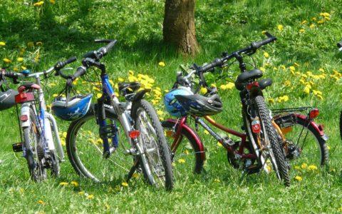 Vélo-Molo